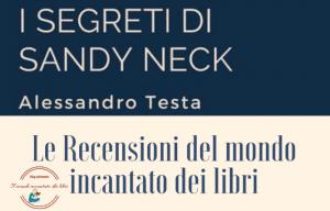 Read more about the article La recensione de I segreti di Sandy Neck a cura di Fabiana Manna